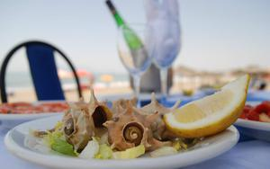 Thumbnail for Check Out Malaga's Famous Beachside Restaurants